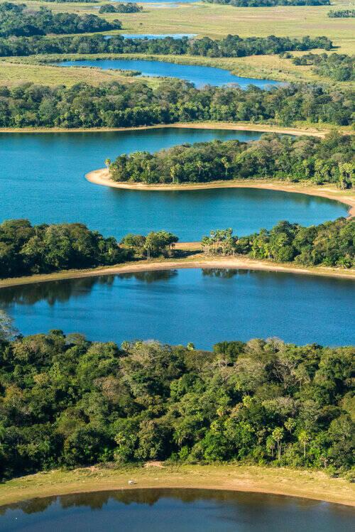 """Imagem do livro """"Pantanal"""",  de João Farkas"""