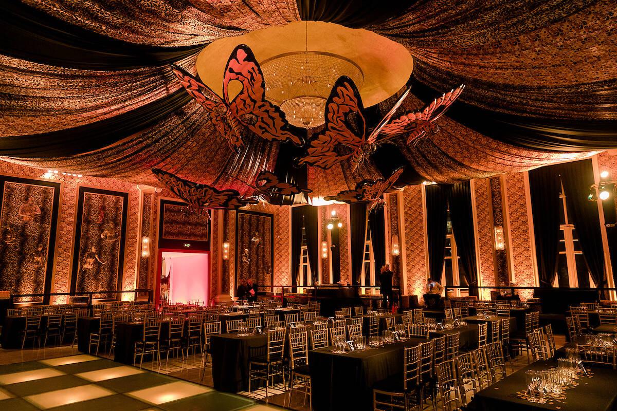 Borboletas gigantes no teto /Foto: MS Fotos