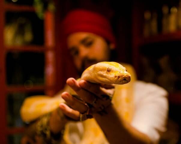A cobra Thor com Eloi Nascimento