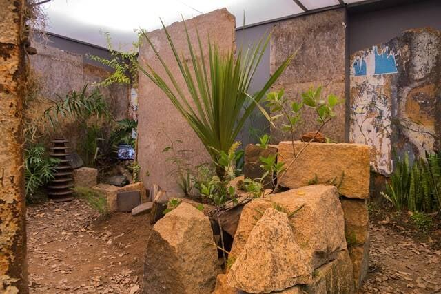 Parte da Instalação na exposição individual de Miguel Rio Branco