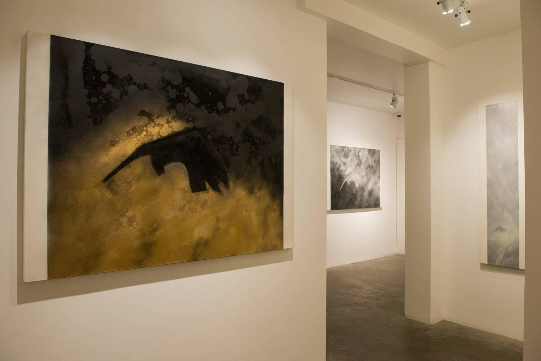 Obras de Carlos Zilio / Foto: Cristina Lacerda