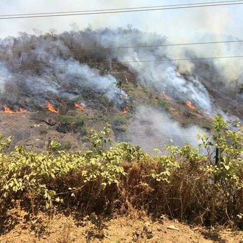 Foco de incêndio na localidade de Secretário, próximo à casa de um leitor / Foto: Juliana Andrade