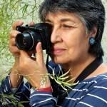 Foto 2 Erna Alfaro Sáa - artista visual autora do livro de fotos sobre o Parque Lage (2)