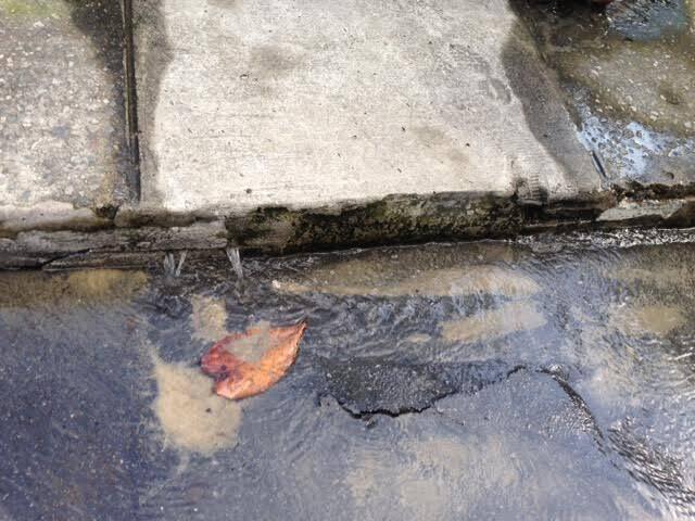 Dois flagrantes do desperdício de água na Gávea: a Cedae pediu três dias para consertar o vazamento/ Fotos: Lu Lacerda