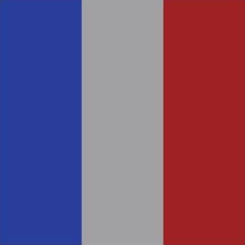 As bandeiras pelas duas causas: enlameada pelo acidente de Mariana e para lembrar a tragédia do terror na França / Fotos: divulgação