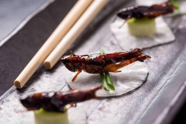 O restaurante de Ipanema tem gafanhotos e outros pratos excêntricos da culinária japonesa / Foto: divulgação