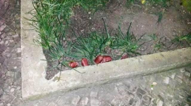 As salsichas foram deixadas em canteiros do Leblon: iscas envenenadas / Foto: reprodução do Facebook