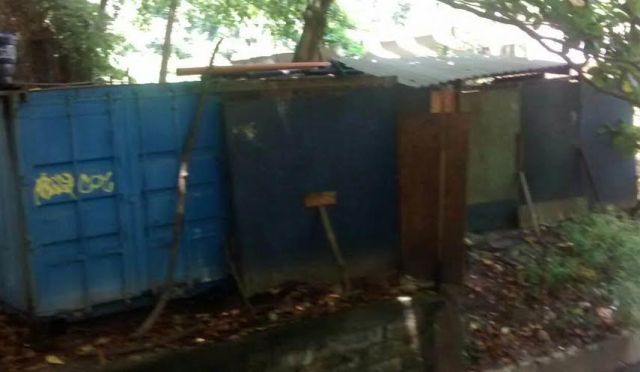São Conrado: lixão do bairro está cheio de larvas do Aedes aegypti