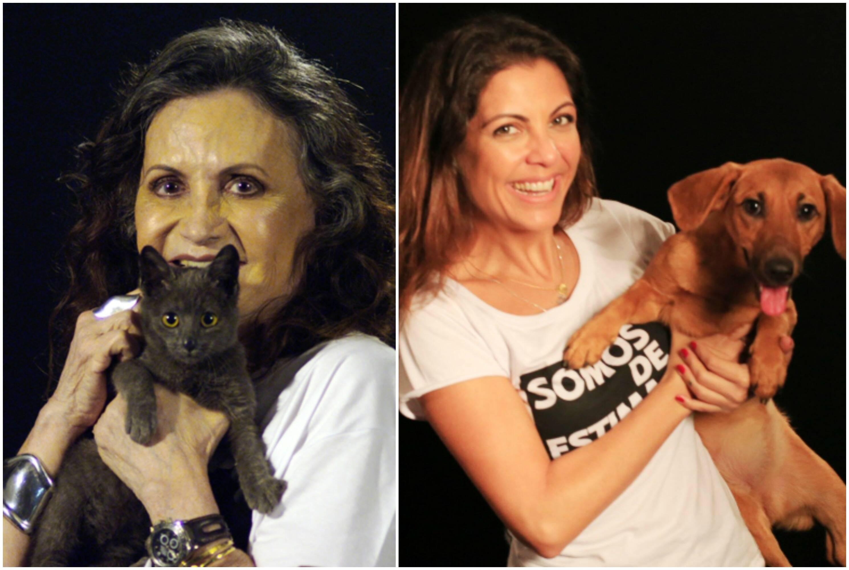 Em sentindo horário: Fernanda Gentil, Miá Mello, Thalita Rebouças e Rosa Maria Murtinho / Fotos: divulgação