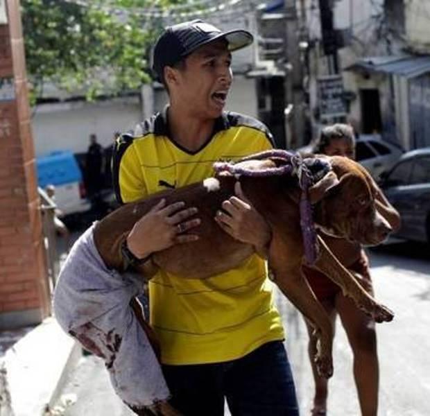 Na primeira imagem, Taz já se recuperando ao lado de Juan, na segunda, o momento do desespero, em clique de Mauro Pimentel, da AFP /Foto: Reprodução Facebook