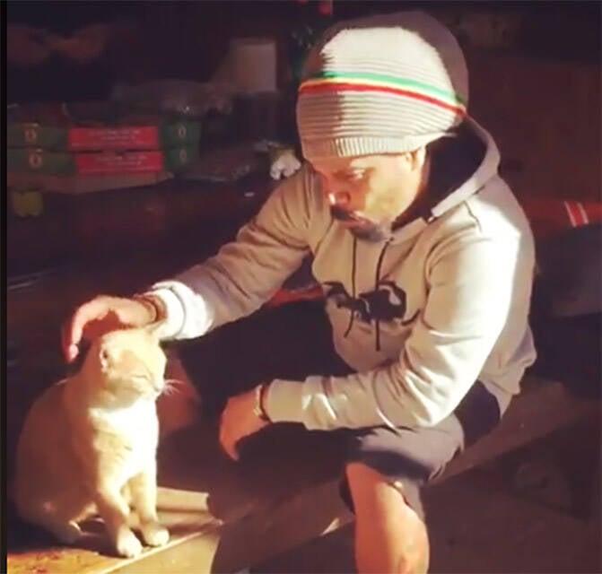 marcelo-falacao-gato-a